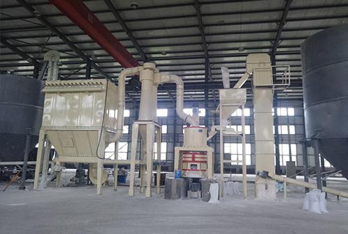 贝壳粉生产